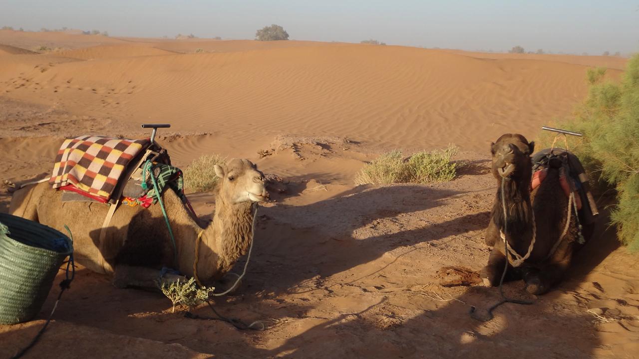 Day 4 : From Erg Smar To Erg Chigaga Dunes