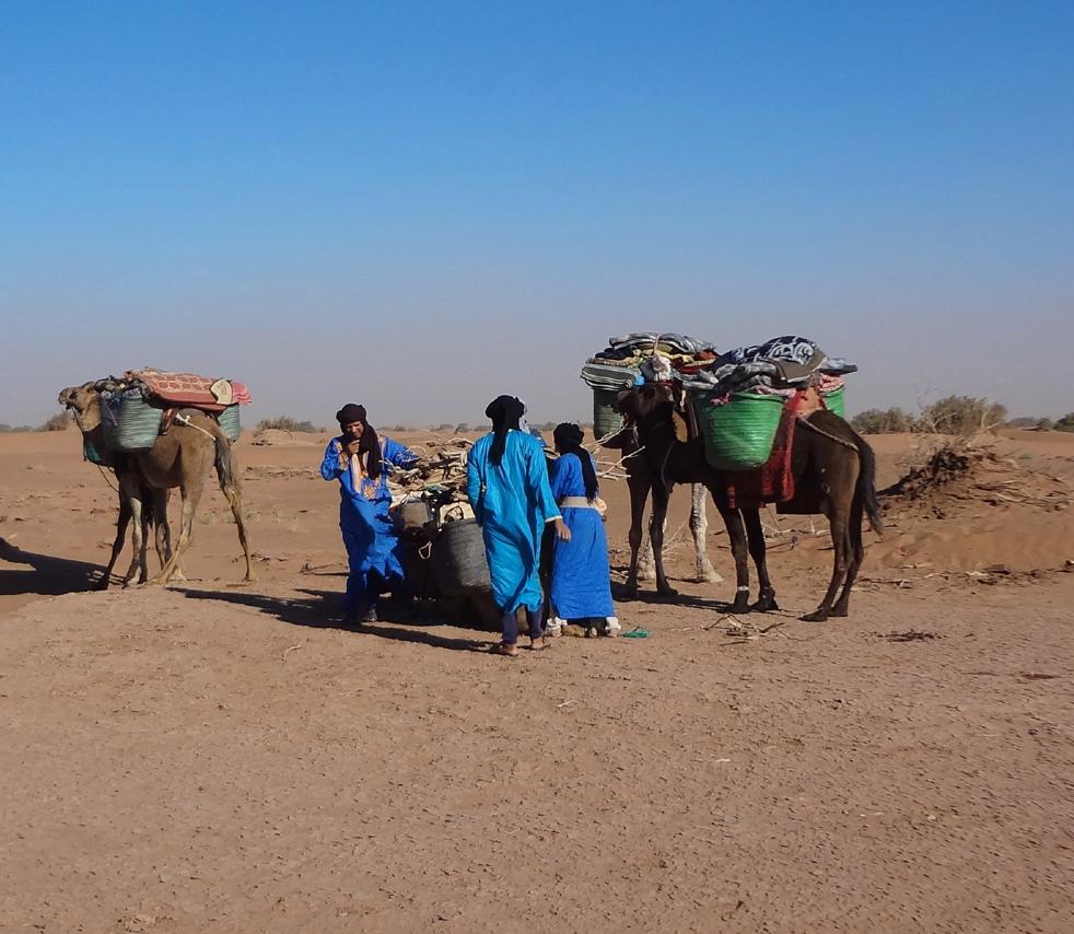 Day 2 : camel trekking into the Dunes of desert