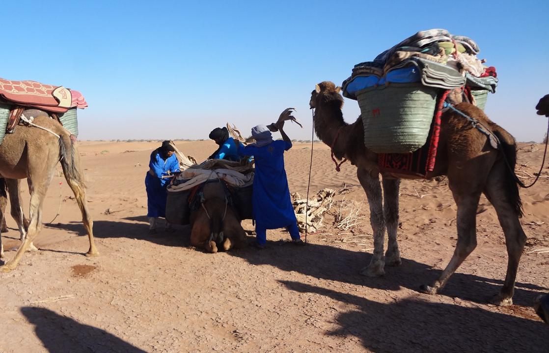 Day 1: From Mhamid To Sahara Desert